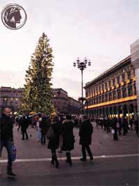 albero-di-Natale-up