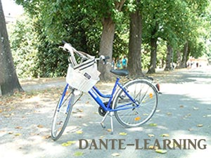 bici-300x225