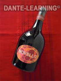 vino-novello-1-210x280